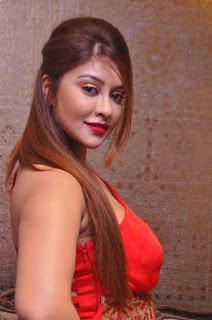 Payal Ghosh Hot