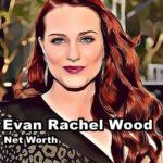 Evan Rachel Wood Net Worth